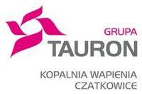 tauron_mini